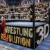 摔跤革命3d最新版