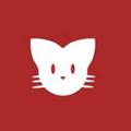 猫咪播放器官方版