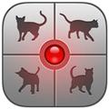 人猫交流器app