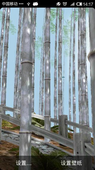 3d竹林动态壁纸汉化版